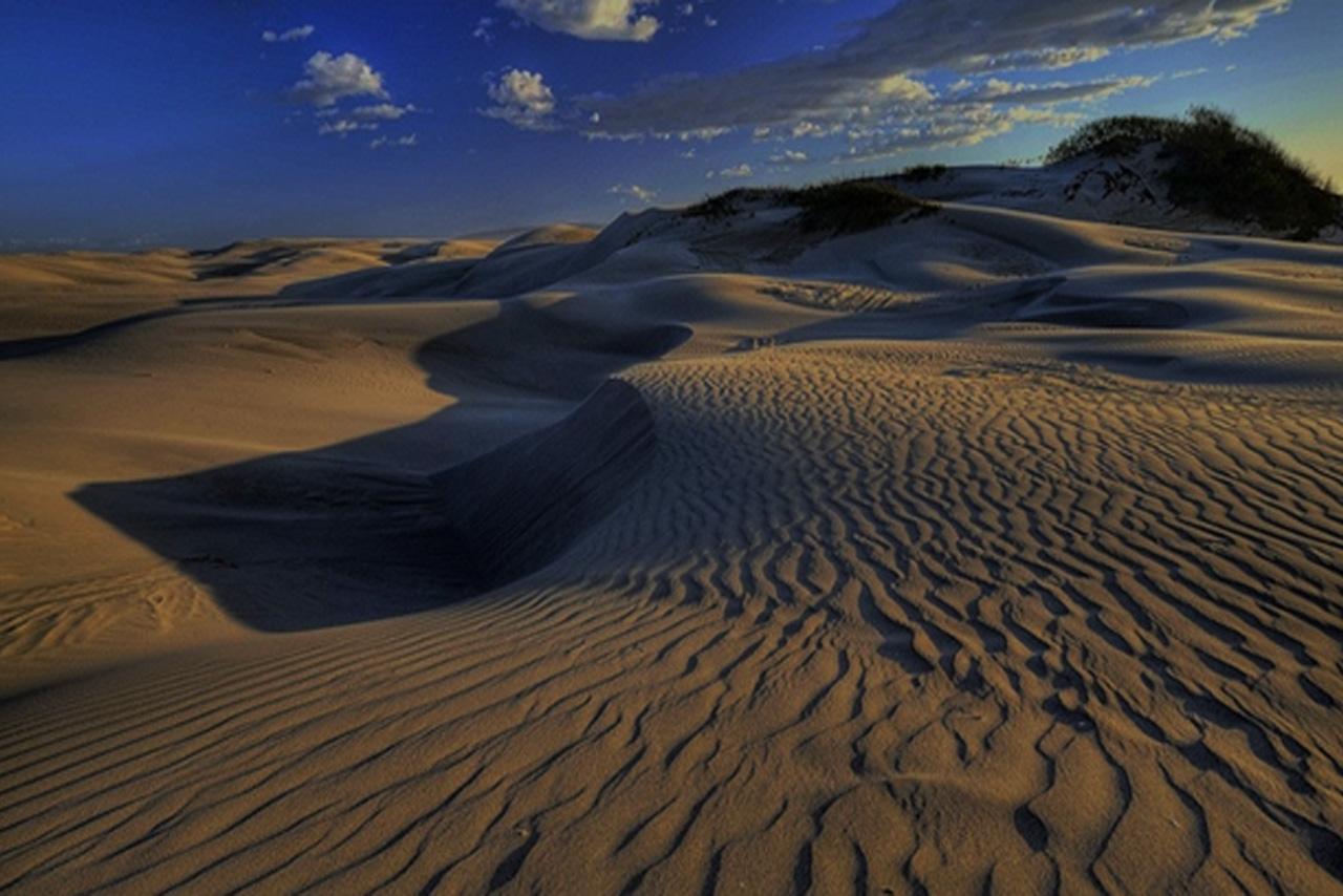 Important Update regarding Oceano Dunes